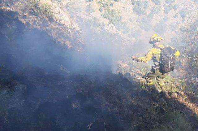 Las Brif intervienen en la extinción del incendio de Sotillo de la Adrada (Ávila).
