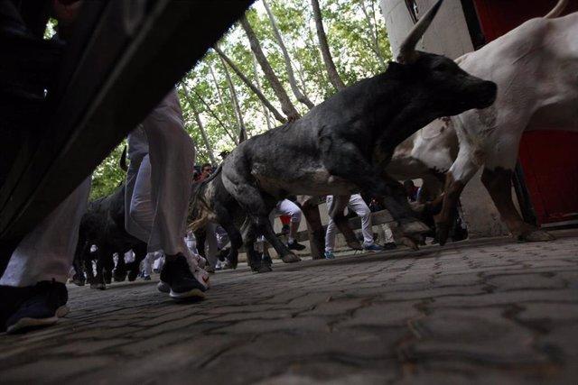 Cientos de personas corren en el último encierro de los Sanfermines 2019 en Pamplona (Navarra).