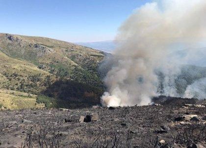 300 personas trabajan para evitar que se reproduzca el fuego en Sotillo (Ávila) que sigue activo