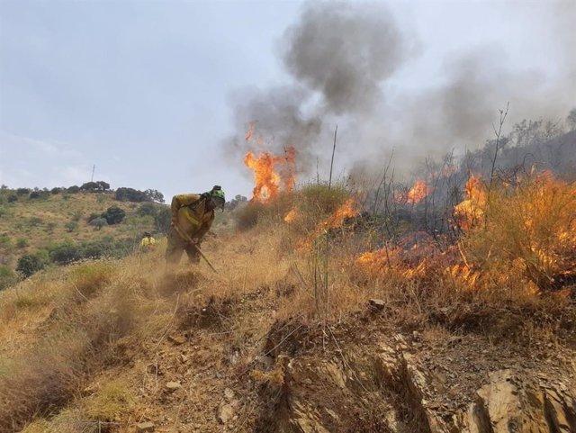 Un bombero del Plan Infoca trabaja en la extinción de un incendio forestal declarado en el paraje Arroyo Jaboneros de Málaga capital.