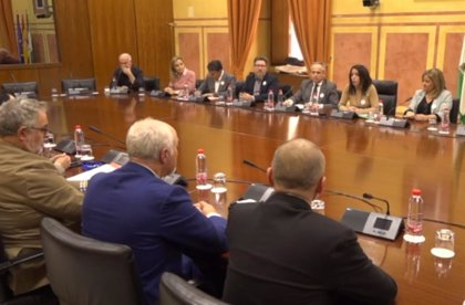 """La Mesa del Tren de Almería pide a Moreno que impulse el trámite de la declaración contra el """"abandono ferroviario"""""""