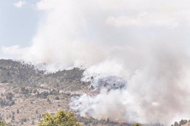 Frente del incendio en Beneixama.