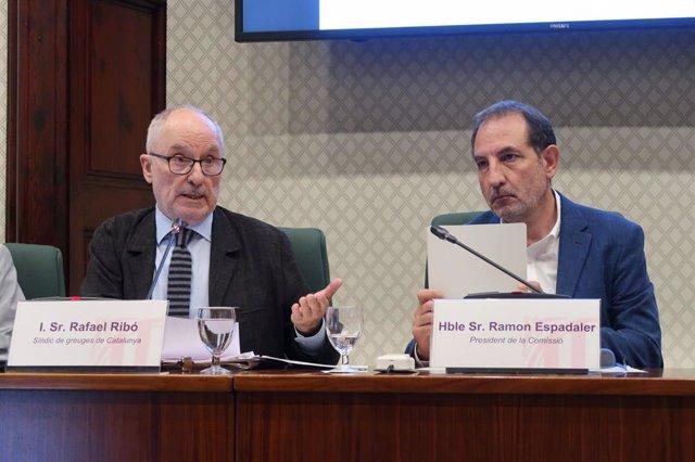 El síndic de Greuges, Rafael Ribó, en comissió parlamentria