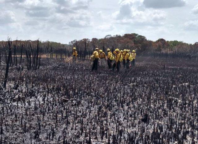 Incendi devastador en la reserva de la biosfera