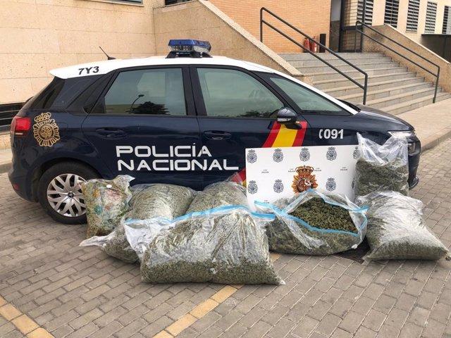 Carga de marihuana hidropónica interceptada por la Policía Nacional.