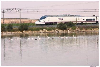 El Gobierno informa de que el plazo de entrega para nuevos trenes de Cádiz con Madrid llega hasta 2029