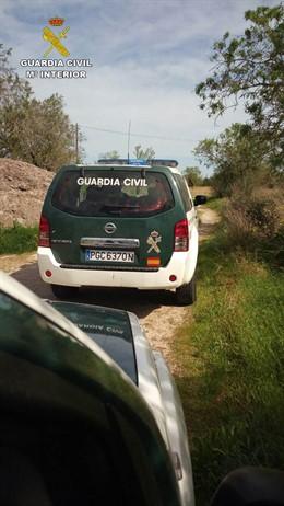 Dispositivo de la Guardia Civil en Sa Pobla para localizar a un presunto ladrón.