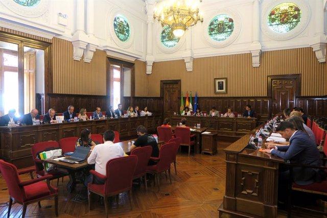 Primer pleno del mandato en  Diputación