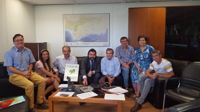 Representantes de la Federación Andaluza de Entidades Locales Municipales (FAEM) con el director general de Administración Local de la Junta de Andalucía, Joaquín López-Sidro