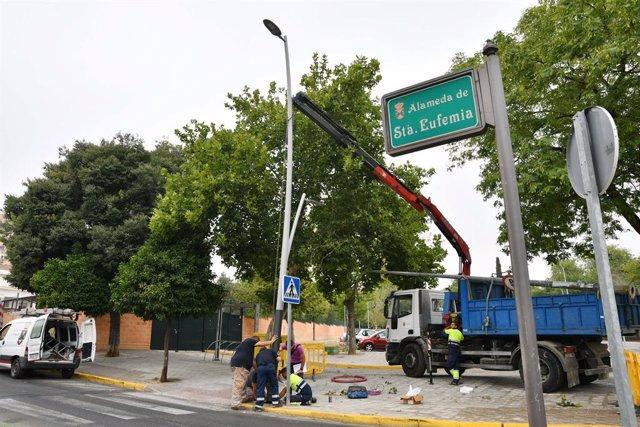 Sevilla.- El Ayuntamiento de Tomares mejora el alumbrado de La Alameda de Santa