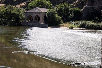 Rescatan un cadáver que estaba flotando en el río Tajo, a la altura de Toledo