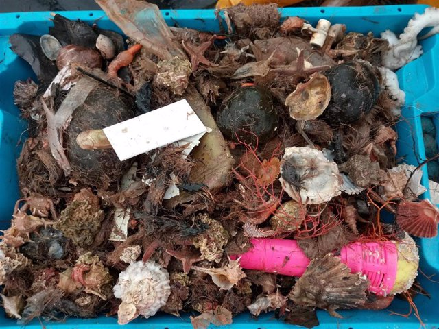 Una de las cajas de captura pesquera con basura obtenidas durante el estudio