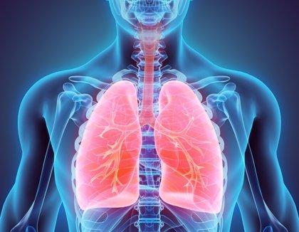 El 65% de los pacientes con fibrosis pulmonar idiopática no acude a rehabilitación por la desinformación del profesional
