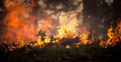 Inteligencia Artificial para calcular la probabilidad de que se produzca un incendio, antes de que ocurra