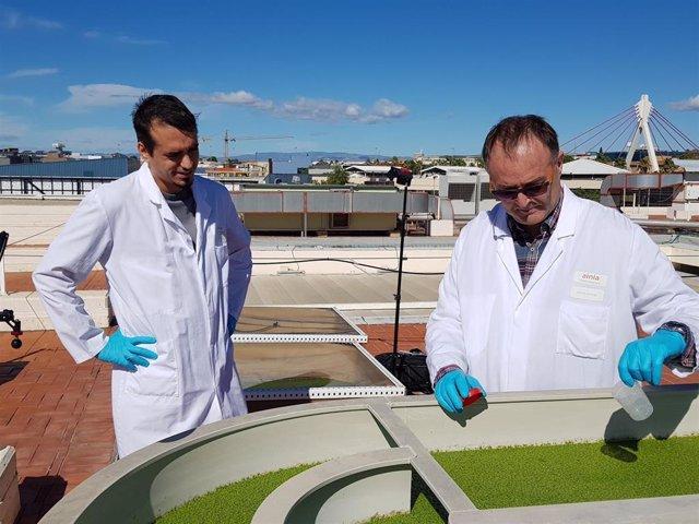 Planta semiindustrial para recuperar nutrientes de purines porcinos