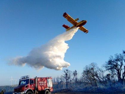 Controlado el incendio declarado este jueves en un pinar de las Bardenas