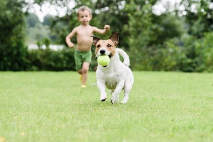 Juegos para estimular la visión del niño en verano