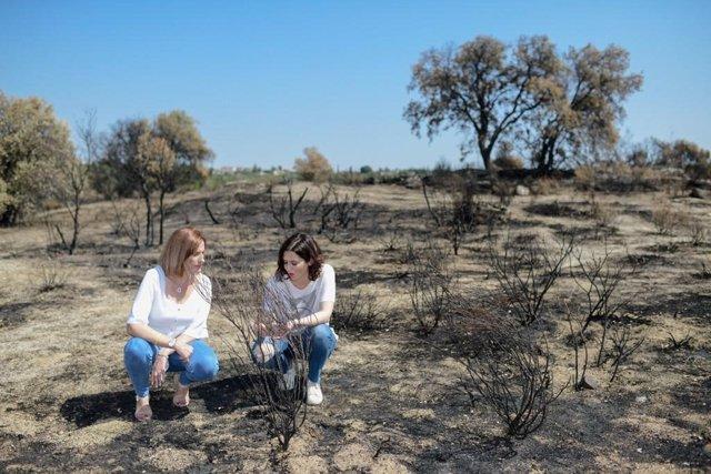 La candidata del PP a la Presidencia de la Comunidad de Madrid, Isabel Díaz Ayuso, visita la localidad de Cadalso de los Vidrios que sufrió recientemente un incendio forestal.