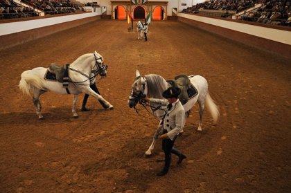 La Real Escuela Andaluza del Arte Ecuestre ofrece una exhibición extraordinaria