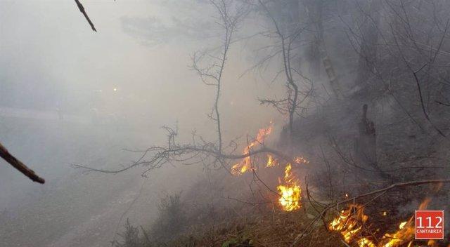 Activado el nivel 2 del operativo de incendios forestales en el sur de Cantabria