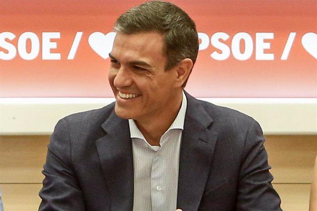 El secretario general del PSOE y presidente del Gobierno en funciones, Pedro Sánchez, durante la reunión de la Comisón Ejecutiva Federal del partido.