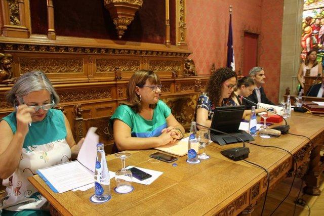 La presidenta del Consell de Mallorca, Catalina Cladera, en el primer pleno de la legislatura