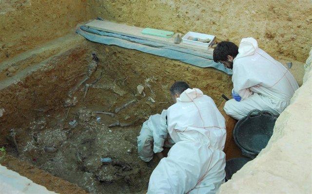Imagen de la exhumación de represaliados franquistas en la fosa 113 de Paterna (Valencia).