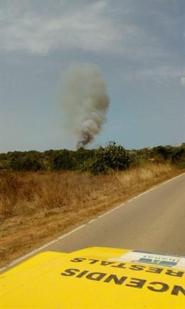 Imagen del incendio que ha afectado a media hectárea de pinar en Sant Joan de Labritja, en Ibiza