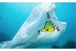 Panamá se convierte en el primer país centroamericano en prohibir las bolsas de plástico
