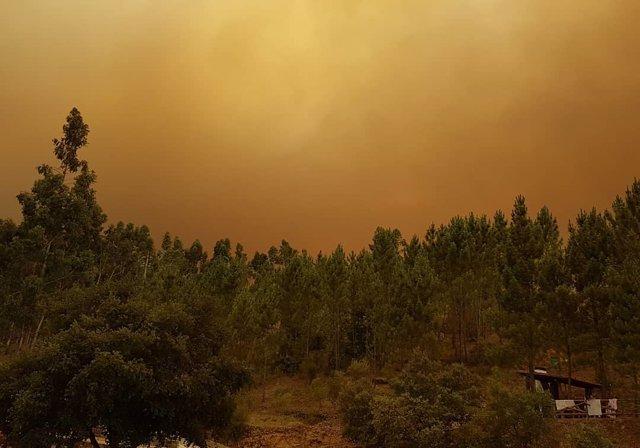 Incendio en Portugal, cerca de Gondomil