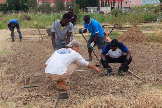 La UPO Y La Fundación Mornese se unen para fomentar la formación de jóvenes inmigrantes a través de prácticas