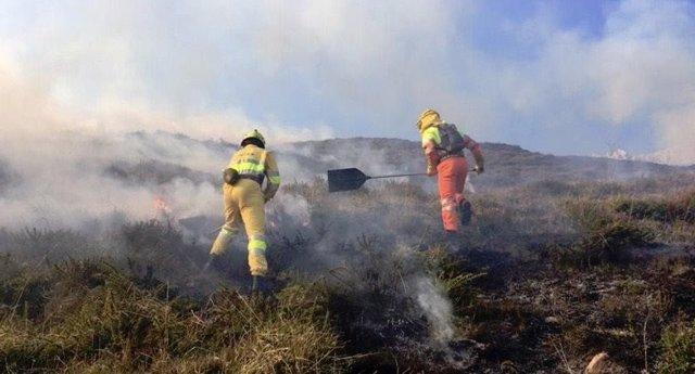 Extinción de incendios forestales en marzo de 2019