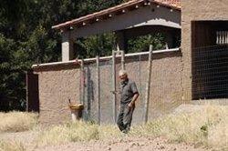 Preocupació al Montseny pels excursionistes que porten el gos deslligat i l'efecte que això provoca en els ramats (ACN)