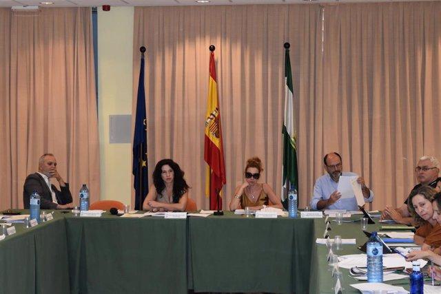 La consejera de Igualdad, Rocío Ruiz, en la reunión del Consejo Andaluz de Atención a las Personas con Discapacidad.