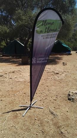 Campamento de verano 'La Victòria' en Alcúdia