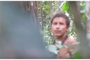 Captan a un indígena no contactado en Brasil de la tribu Awá en una zona amenazada por madereros ilegales