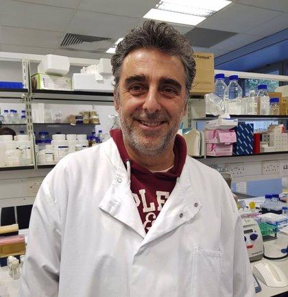 Hallan una nueva clave para entender el mecanismo de resistencia a los antibióticos que desarrollan las bacterias