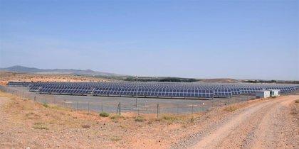 El Ayuntamiento de La Almunia impulsa la creación de una nueva planta solar fotovoltaica