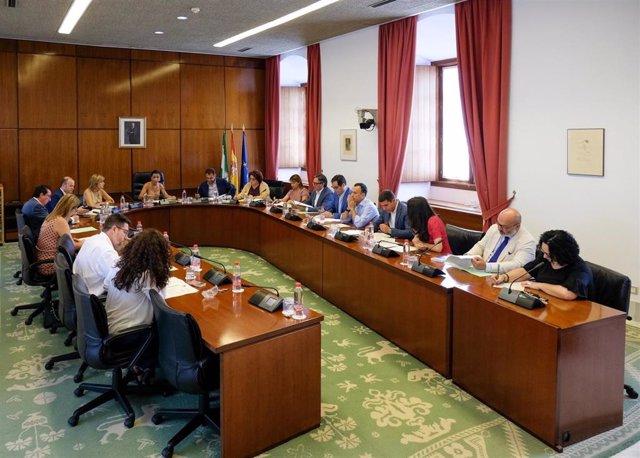 El Presupuesto andaluz para el 2019 afronta la próxima semana su debate final ante el Pleno del Parlamento