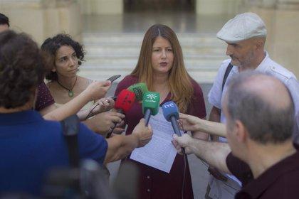 """Adelante reclama declarar el """"estado de emergencia climática"""" en Sevilla y aboga por restituir el Plan Centro"""