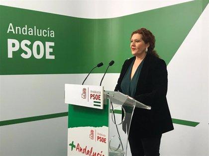 """Maese (PSOE) asegura que """"el gobierno andaluz maltrata a Cádiz en materia educativa y no ofrece soluciones"""""""