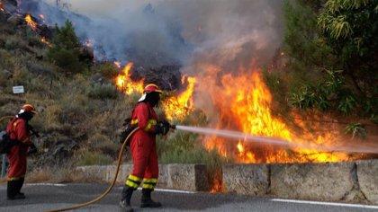 Sube a nivel 2 el fuego de Poyales del Hoyo (Ávila), que se reproduce y provoca el corte de la CL-501