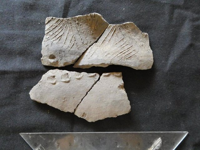 Restos cerámicos encontrados en Real Alto