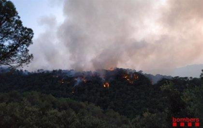 Declarado un incendio forestal en Capellades (Barcelona) al lado de la C-15