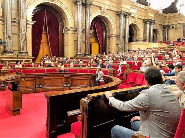 Ple del Parlament amb el president de la Generalitat, Quim Torra