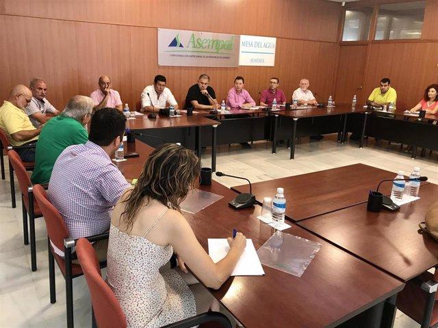 Reunión de la Mesa del Agua de Almería