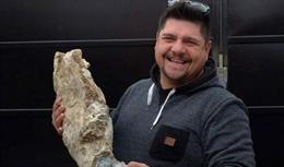 Fósil de un mastodonte