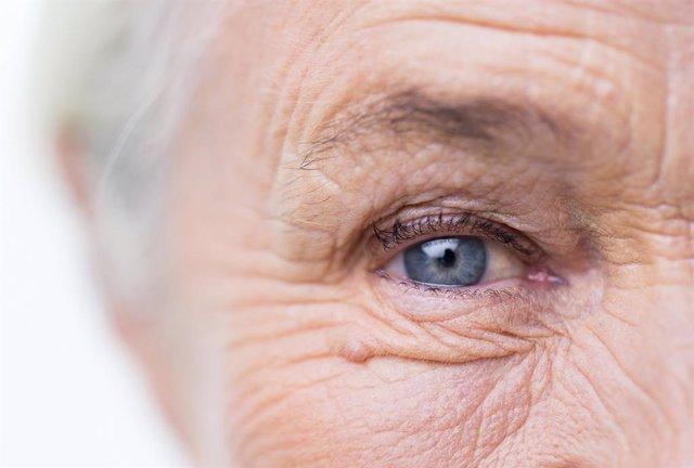 Arrugas, ojos, canas, mayor, anciana