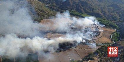 Una veintena de efectivos continúan trabajando en el incendio cerca del embalse del Cenajo