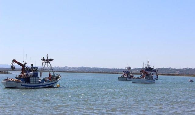 Barcos de pesca.